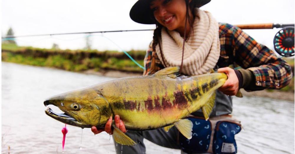 Large 1489769270 salmon