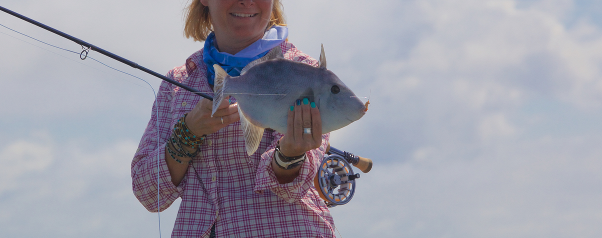 Header 1497568331 jen riple first trigger fish belize